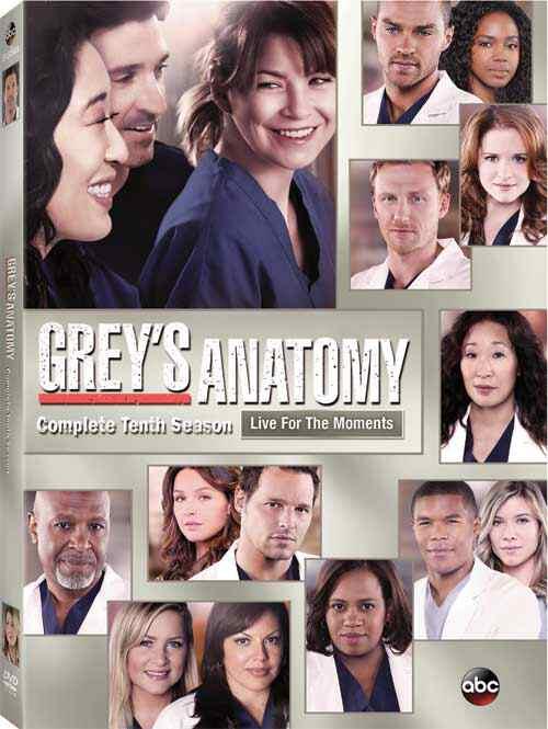 Greys Anatomy Season 8 Piratestreaming Last Episode Of Pit Bulls