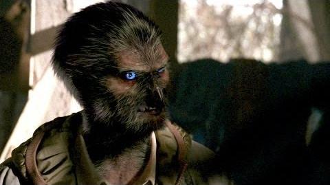 Creature Profile Raub-Kondor - Grimm
