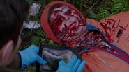 514-James Kriminski's body