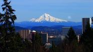 505-Portland