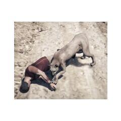 Cougar killing Trevor