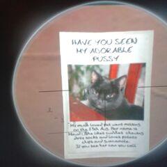 A cat poster in GTA IV.