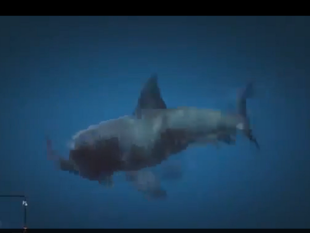 File:Shark attacking.png
