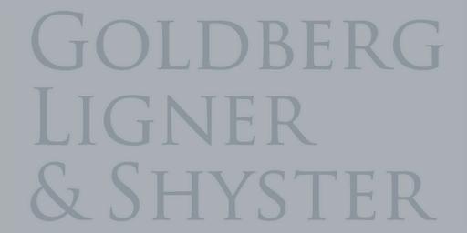File:GoldbergLignerShyster-GTAIV-Logo.png