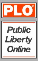 File:Publiclibertyonline.com-GTAIV-WebBanner.png