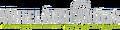 WheelArchAngels-GTASA-logo.png