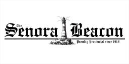 File:Senora Beacon GTA V.png