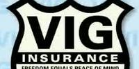 VIG Insurance