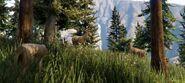 Deer-GTAV-nextgen