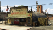AmmuNation-PaletoBay-GTAV