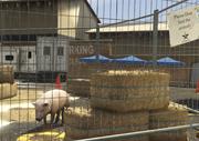 Director Mode Actors GTAVpc Animals Pig
