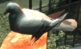 FlyingRat-GTA4