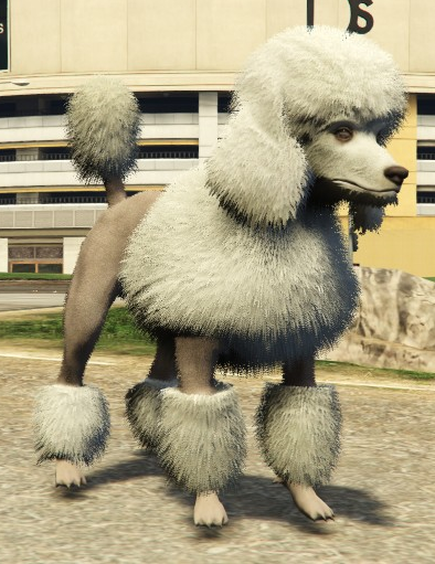 File:Poodle-GTAV-PS4.png