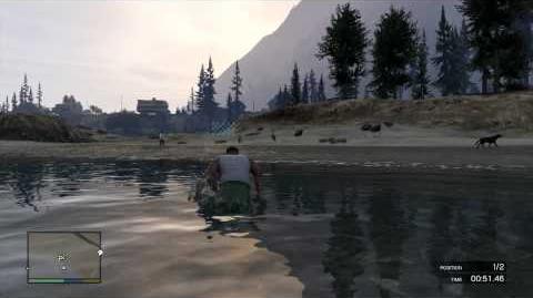 Grand Theft Auto 5 GTA5 Exercising Demon-Franklin-Mission Gold Achievement Walkthrough