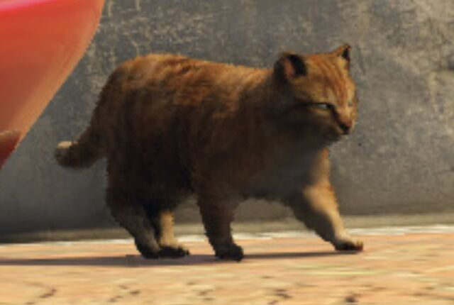 File:Cat-GTAV-screenshot.jpg