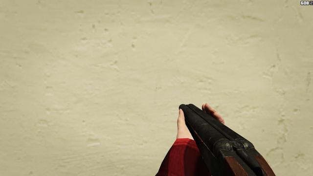 File:DoubleBarreledShotgun-GTAO-FPVAiming.png