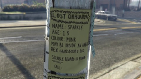 File:LostPets-Chihuahua.jpg