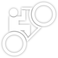 File:WheelieRider-GTA4-trophy.PNG