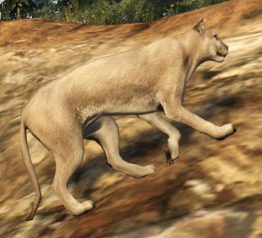 File:Gta5cougarprofile.jpg