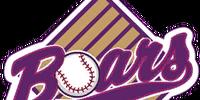 Boars Baseball Club