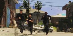 Police-batons