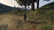 RiskAssessment-GTAV-HangingFromTree