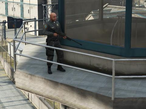 File:SASPA-GTAV-SniperWatchTower.png
