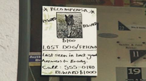 File:LostPets-Dog.jpg