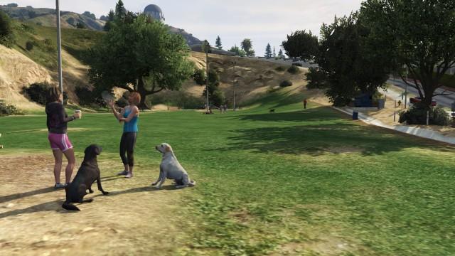 File:Vinewood Hills Dog Exercise Park GTAV looking east.jpg