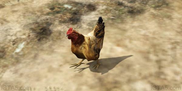 File:Chicken-GTAV-BlaineCounty.jpg