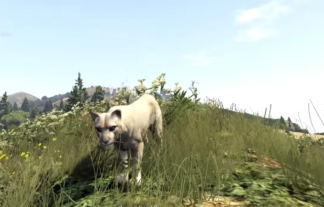 File:Cougar-GTAV-PS4-PeyotePlant.png