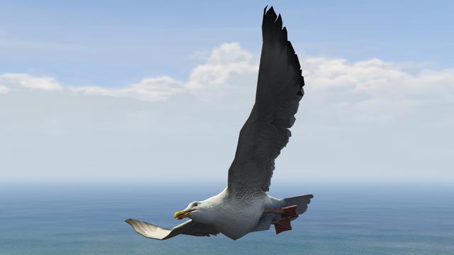 File:Monk-GTAV-Seagull.png