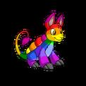 Bori rainbow