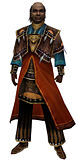 Dunkoro Sunspear armor.jpg