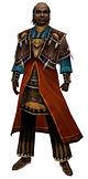 Plik:Dunkoro Sunspear armor.jpg