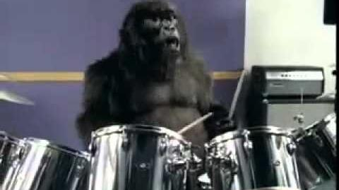 Gorilla TV advert - In The Air Tonight