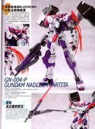 GN-004-P
