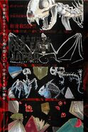 Kidou Senshi Gundam - Far East Japan2