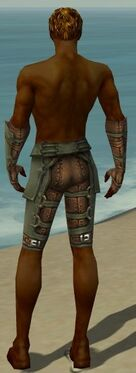 Ranger Ascalon Armor M gray arms legs back
