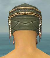 File:Ritualist Imperial Armor M gray head back.jpg