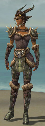 File:Warrior Charr Hide Armor F gray front.jpg