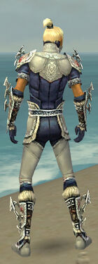 Assassin Norn Armor M dyed back