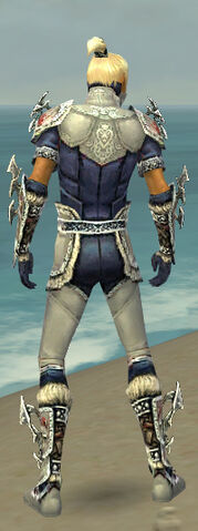 File:Assassin Norn Armor M dyed back.jpg