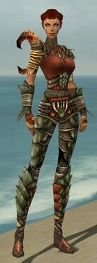 Ranger Elite Drakescale Armor F gray front