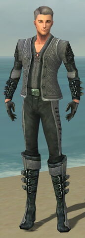 File:Mesmer Elite Rogue Armor M dyed front.jpg