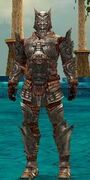 Warrior Asuran Armor M gray front