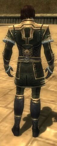 File:Mesmer Elite Sunspear Armor M gray back.jpg
