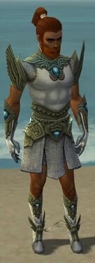 Paragon Monument Armor M gray front
