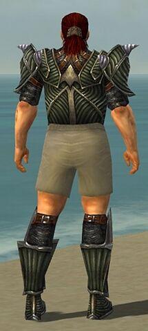 File:Warrior Wyvern Armor M gray chest feet back.jpg