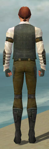 File:Mesmer Ascalon Armor M gray back.jpg